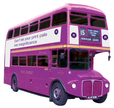 New Bus-Purple