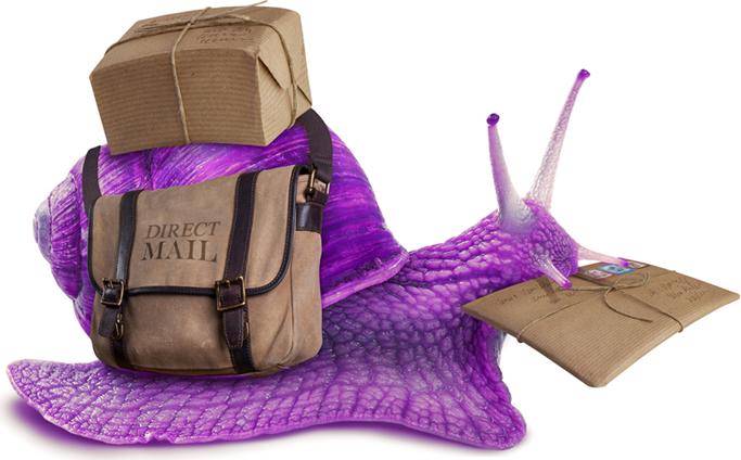 PurpleSnail